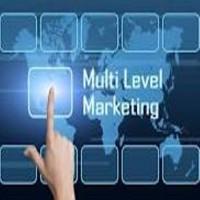 mlm Software Top MLM Software Development Company in Delhi4999 Per Mo